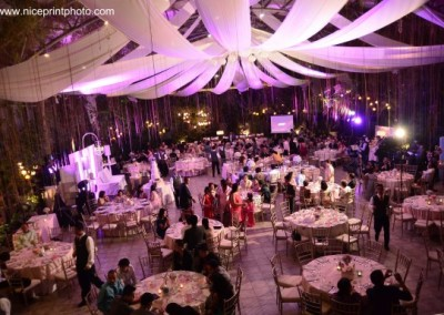 Sweet Harmony Gardens Wedding Packages By Weddings Glass Garden Events Venue
