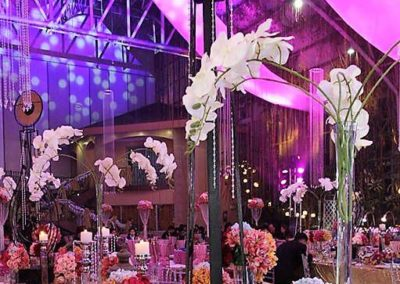 glass garden events venue debut