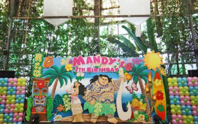 Mandy's Moana Birthday! =)